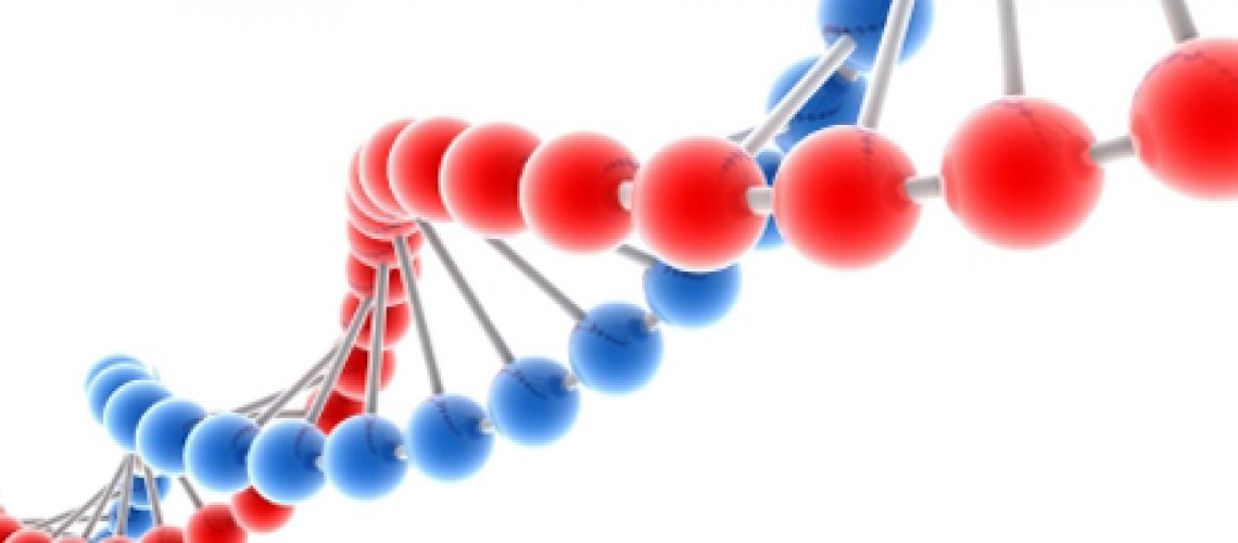 Molecule of DNA, genetic information isolated 3d model
